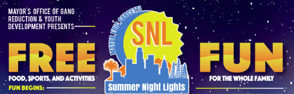 Summer Night Lights Banner