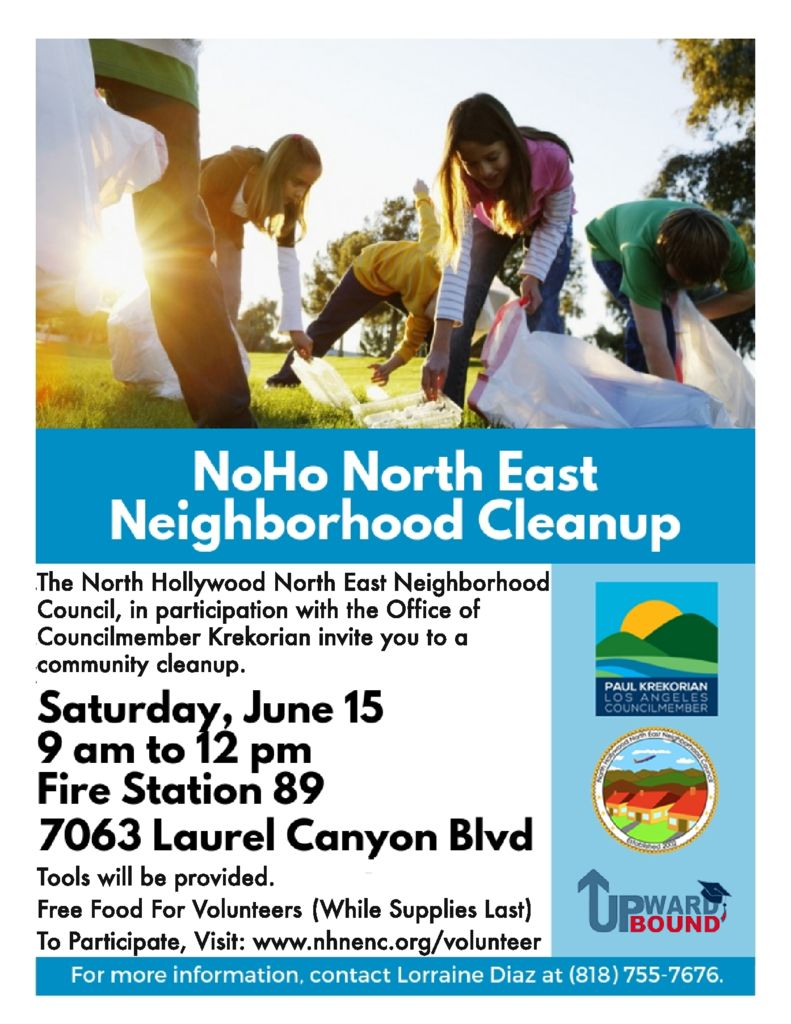 thumbnail of Flyer – Community Cleanup 6-15-19