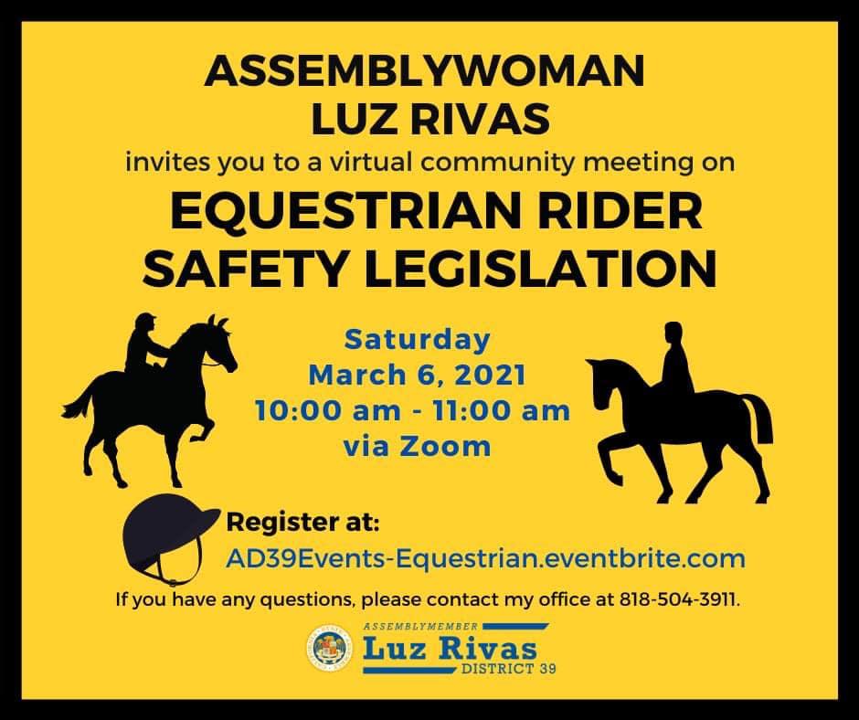 Equestrian Rider Safety Legislation